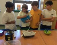 Y6 Cooking Class 2